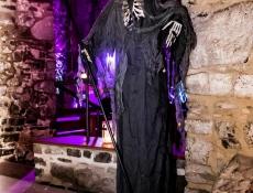 Halloween Hundisburg 2015007.JPG