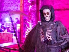 Halloween Hundisburg 2015014.JPG
