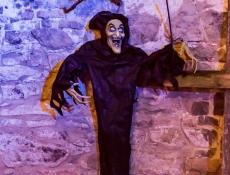 Halloween Hundisburg 2015010.JPG